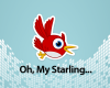 starling_500_400_v1